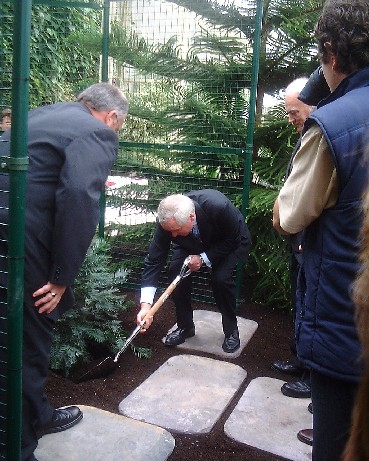The Wollemi pine is planted by An Taoiseach Bertie Ahern